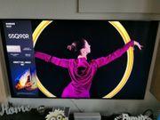 Samsung 55Q90R 55 Zoll 138cm