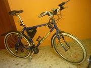Centurion - Beaver Mountainbike