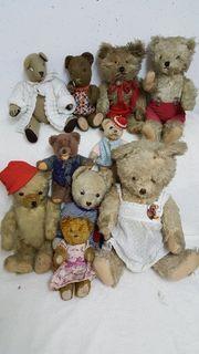 Teddybärensammlung
