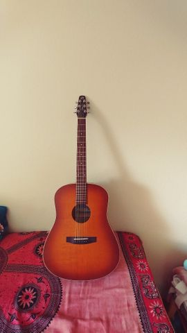 Gitarren/-zubehör - Akkustikgitarre Seagull Entourage Rustic