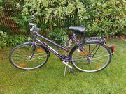 Damenrad Damen Fahrrad 28 Epple