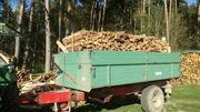 Regionales Brennholz