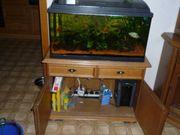 Aquarium 80cm