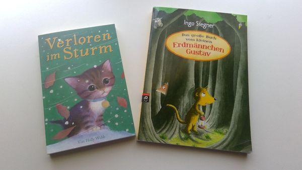2 Kinderbücher VERLOREN IM STURM