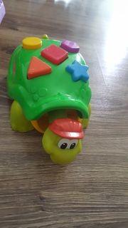 fisher price schildkröte