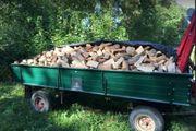 ofenfertiges Brennholz Kaminholz 25cm