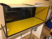 Aquarium 120x 50x50 wie Neu