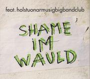 CD Holstuonarmusigbigbandclub - Shame im Wauld