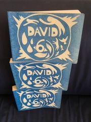DAVID 6 LIEDERBUCH GESUCHT