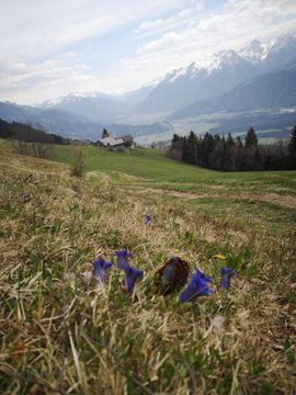 Suchen Grundstück in Röns und Umgebung