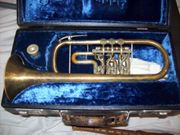 Meistertrompete