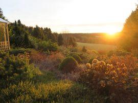 Bild 4 - Das Ferienhaus Sonne Harz und - Braunlage Hohegeiß