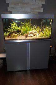 EHEIM Proxima 250 Aquarium-Komplettset passenden