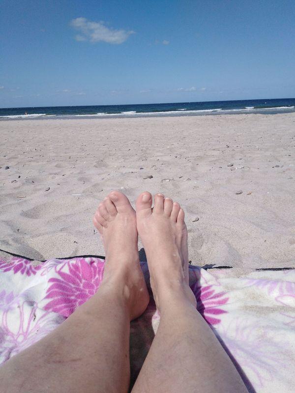 Angelurlaub Badeurlaub Ferienwohnung in Rerik