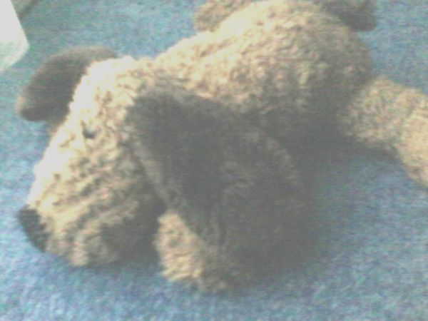 Plüschtier - Plüsch - Handpuppe - Schlapphund - braun -
