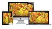 WordPress Webdesign DSGVO-konform und trackingfrei