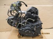 Ducati Super Sport 900-SS Motor