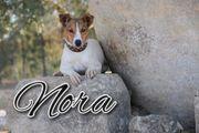 Schenken Sie Nora Liebe und