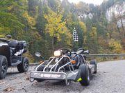 F-Kart 100 Super Zustand