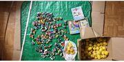 Ü-Eier Sammlung Alt über 125