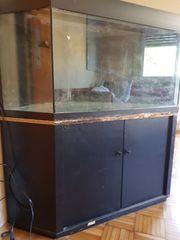 JUWEL Eck-Aquarium Delta 270 Liter