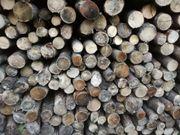 Brennholz hart Ast-ware Günstig der