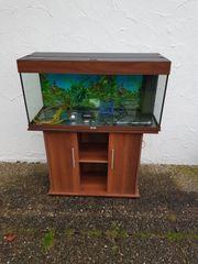 180 Liter Juwel Aquarium mit