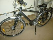 Pegasus Solero Fahrrad 48 Rahmen