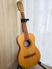Verkaufe Gitarre PRO NATURA Silver Series