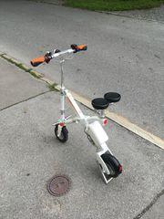 elektro roller scooter