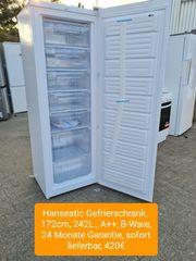 Hanseatic Gefrierschrank 172cm 242L
