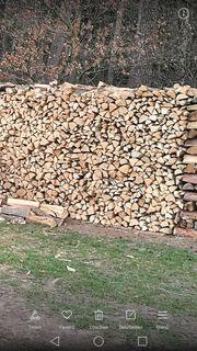 Brennholz Sommeraktionspreis