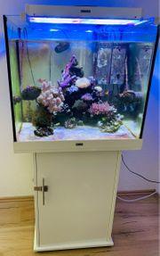 Meerwasseraquarium Juwel komplett