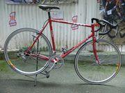 Straßenrennrad von FORT mit 14