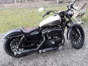 Iron 883N Custom