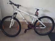 Scott Damen Mountainbike Contessa