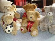 kuscheligen Teddy Teddybär Plüsch Sammlung