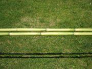 Bambusstäbe - Bambusrohr