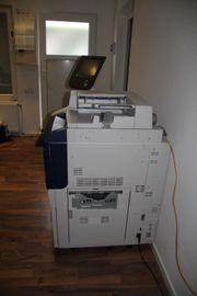 Xerox Colour 550 Profi Busines