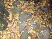 Felsbrocken Natursteine klein zu verschenken