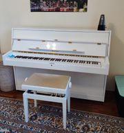Stollenwerk Klavier Samt Hocker alles