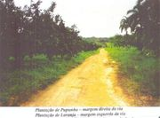Brasilien 1 500 Ha Farm