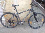 Trekking-Fahrrad Bulls CL 400