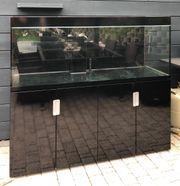 Eheim Incpiria 500 Aquarium