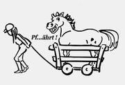 Reitbeteiligungspferd