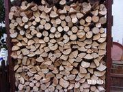 Brennholz für 2019