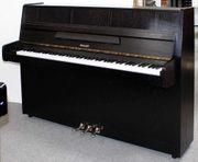 Klavier Hellas 105 Eiche schwarz