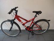 Fahrrad - Mountainbike - Vortex Hill 300 -