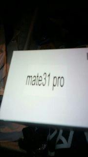 mate 31 pro