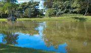 Brasilien 300 Ha Tiefpreis- Grundstück -